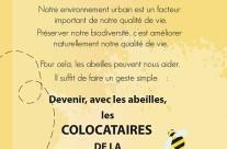 Fly de présentation du projet Colocabeille